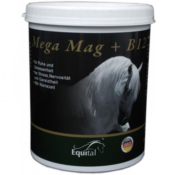Equital Mega Mag Pulver